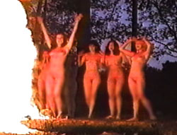 tv-porno-onlayn-transov